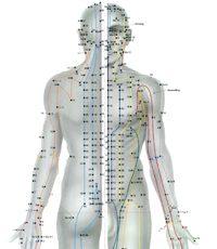 Meridianchart Forschungsgruppe Akupunktur_kl